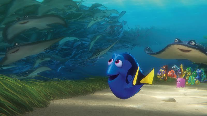 Die vergessliche Dorie ;) ©2016 Disney•Pixar. All Rights Reserved.