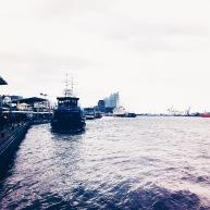 Der beste Blick auf die neue Elbphilharmonie hat man vom Boot aus! © Lars Wars